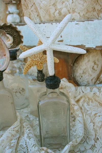 Shell_bottle_blog_size
